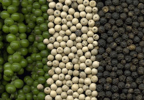 Pepper (Spice)